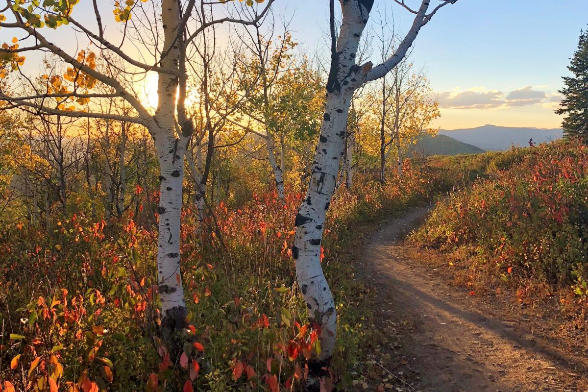 Panorama Trail offers beautiful 360 views of the Yampa Valley