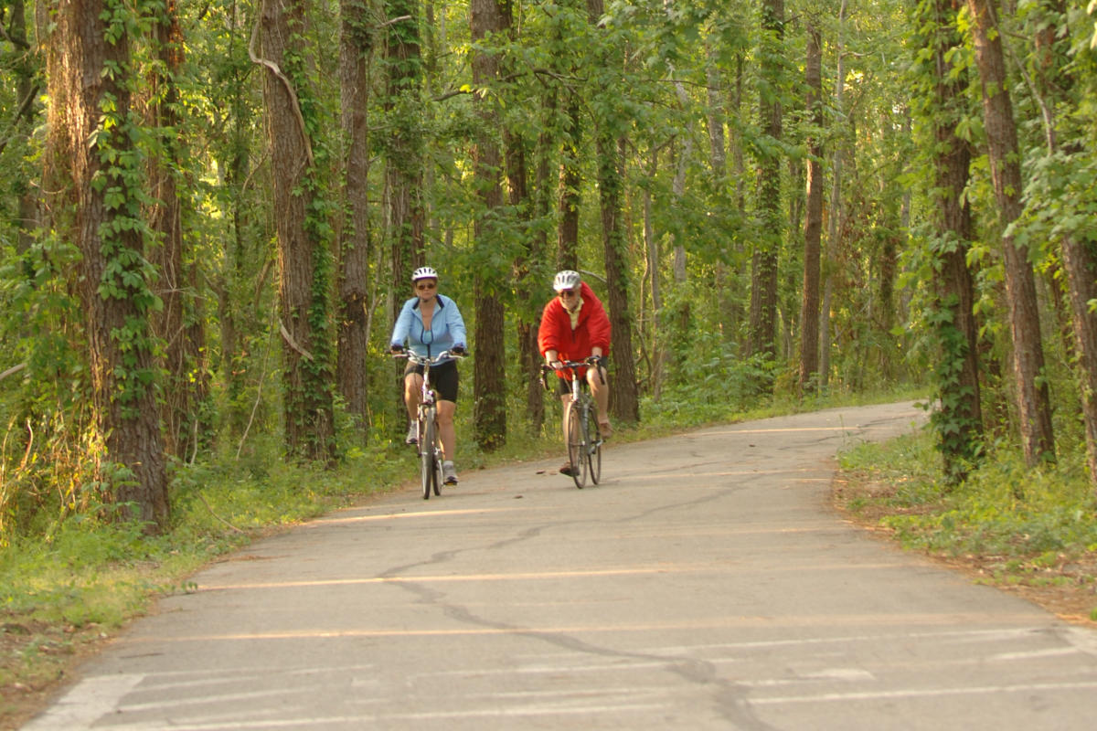 The 31-mile Tammany Trace hike and bike trail winds through Northshore towns and green spaces Cropped