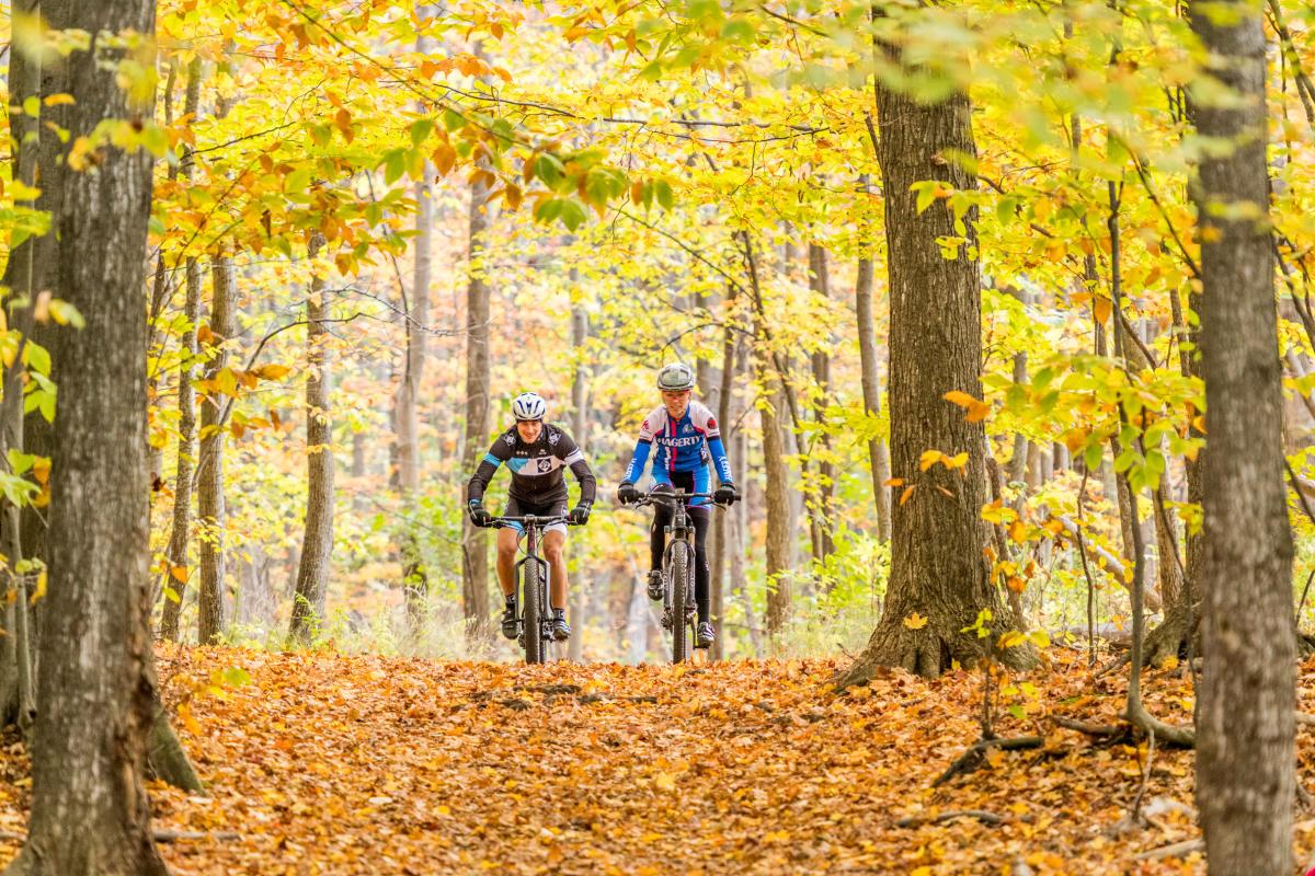 Fall Biking in Traverse City