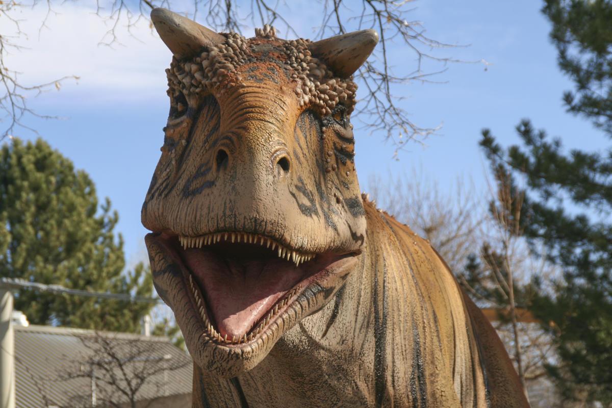 Dinos! at the Denver Zoo