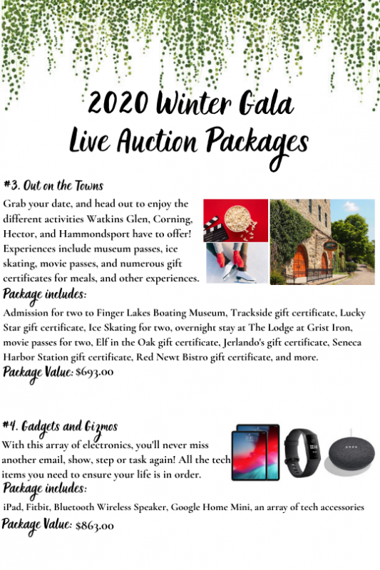 2020_Winter_Gala_Live_Auction_3-4