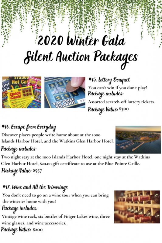 2020_Winter_Gala_Silent_Auction_15-17