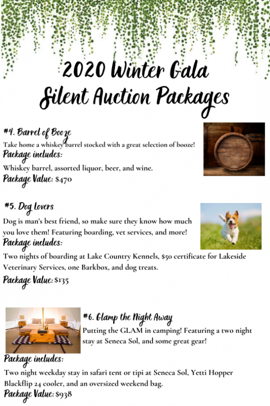 2020_Winter_Gala_Silent_Auction_4-6
