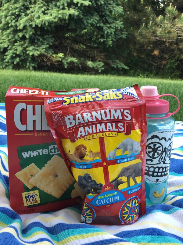 Snacks and beverages picnic on beach towel for day trip to Big Falls