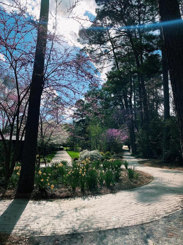 glencairn garden