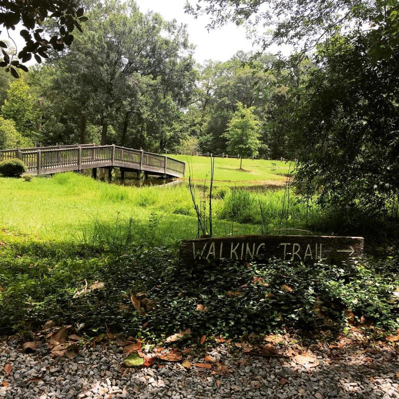 Lockerly Arboretum UGC