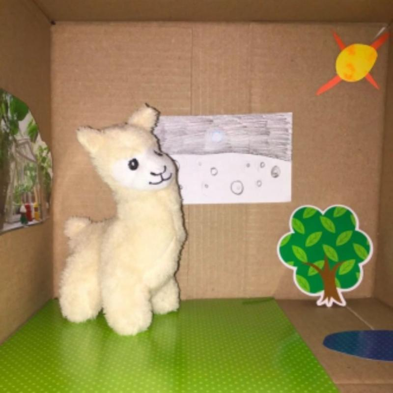 Chabot Space and Science Experiment Photo of a llama in a box with a moon background
