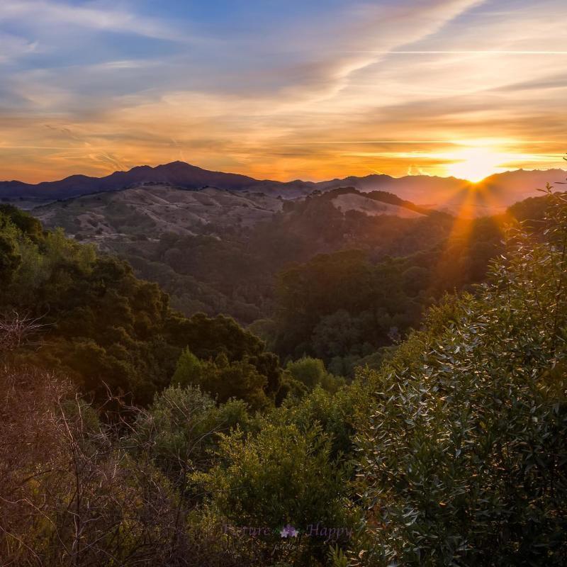 Oakland Hills Sunset from Joaquin Miller Park