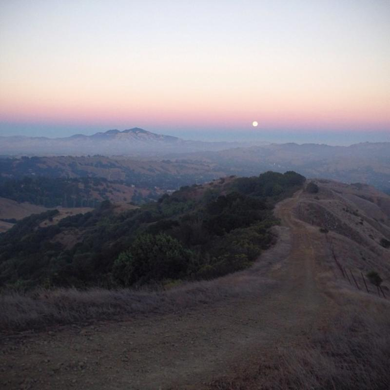View from a trail at Huckleberry Botanic Preserve with the sun at the horizon