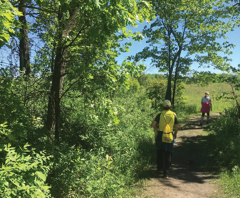 Haley Collins Succession Trail dirt path
