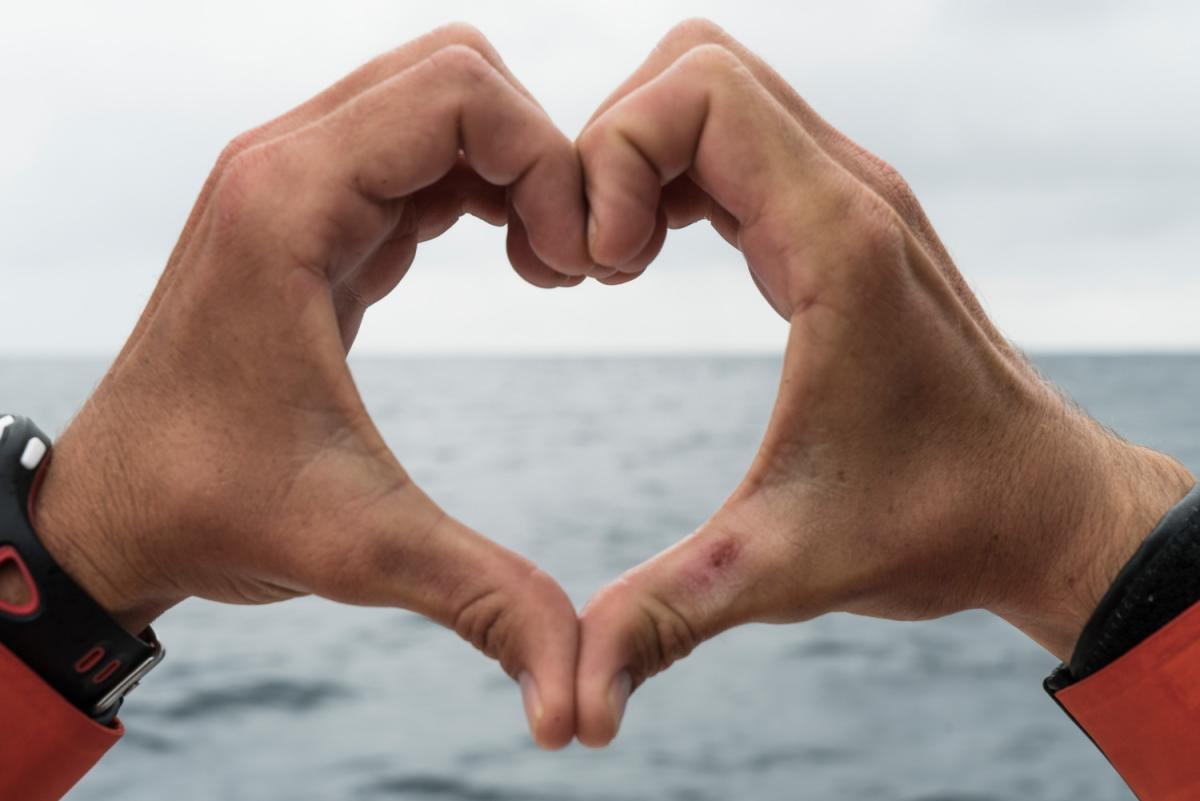 Volvo Ocean Race Heart