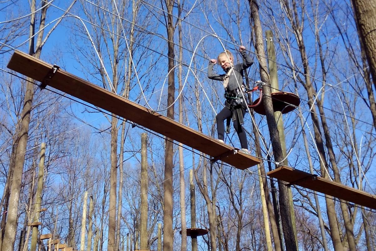 Tree_Trekkers