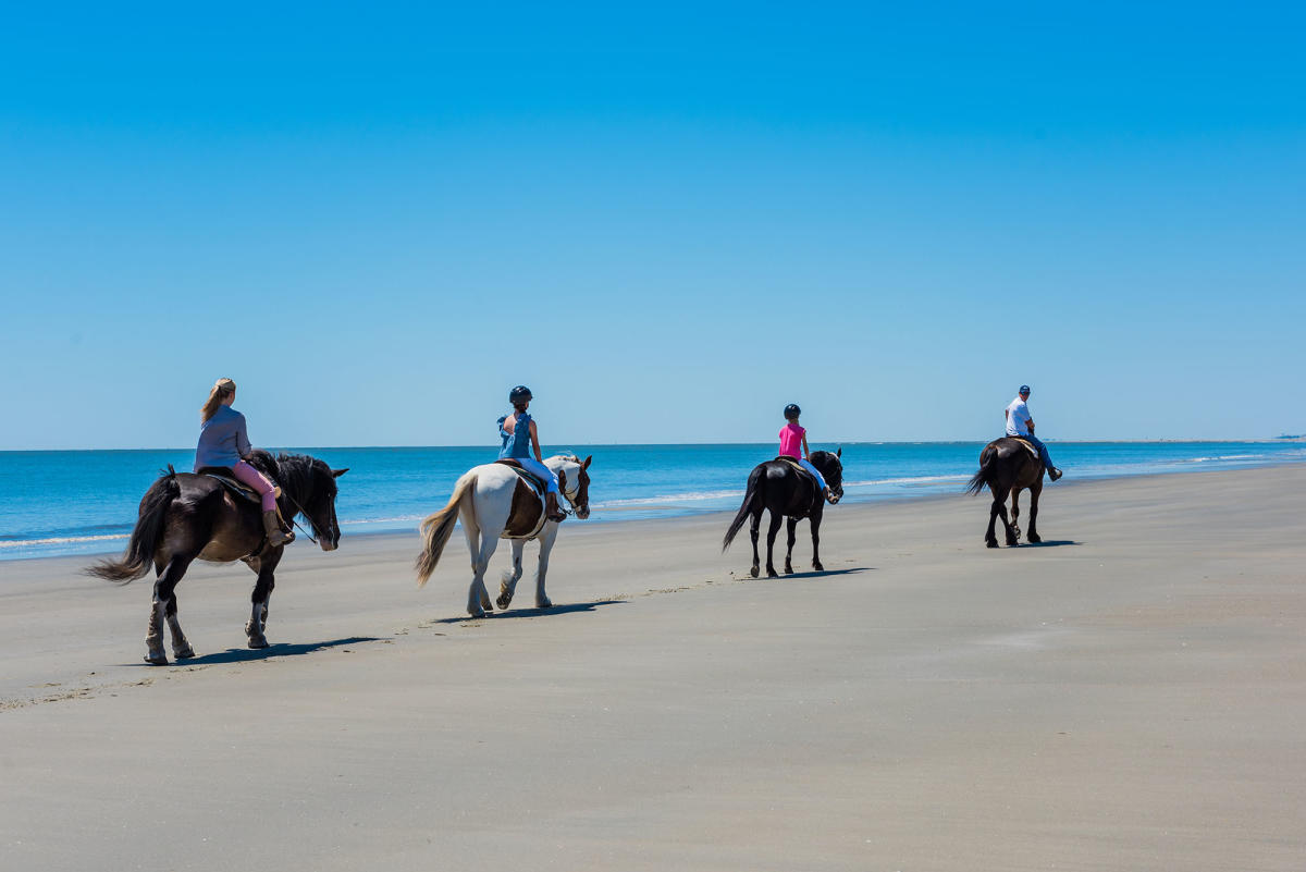 A guided horseback tour takes in the sights and sounds on the secluded beaches in Golden Isles, Georgia