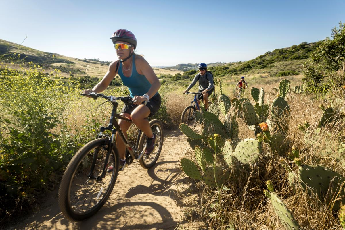 people mountain biking in Bommer Canyon