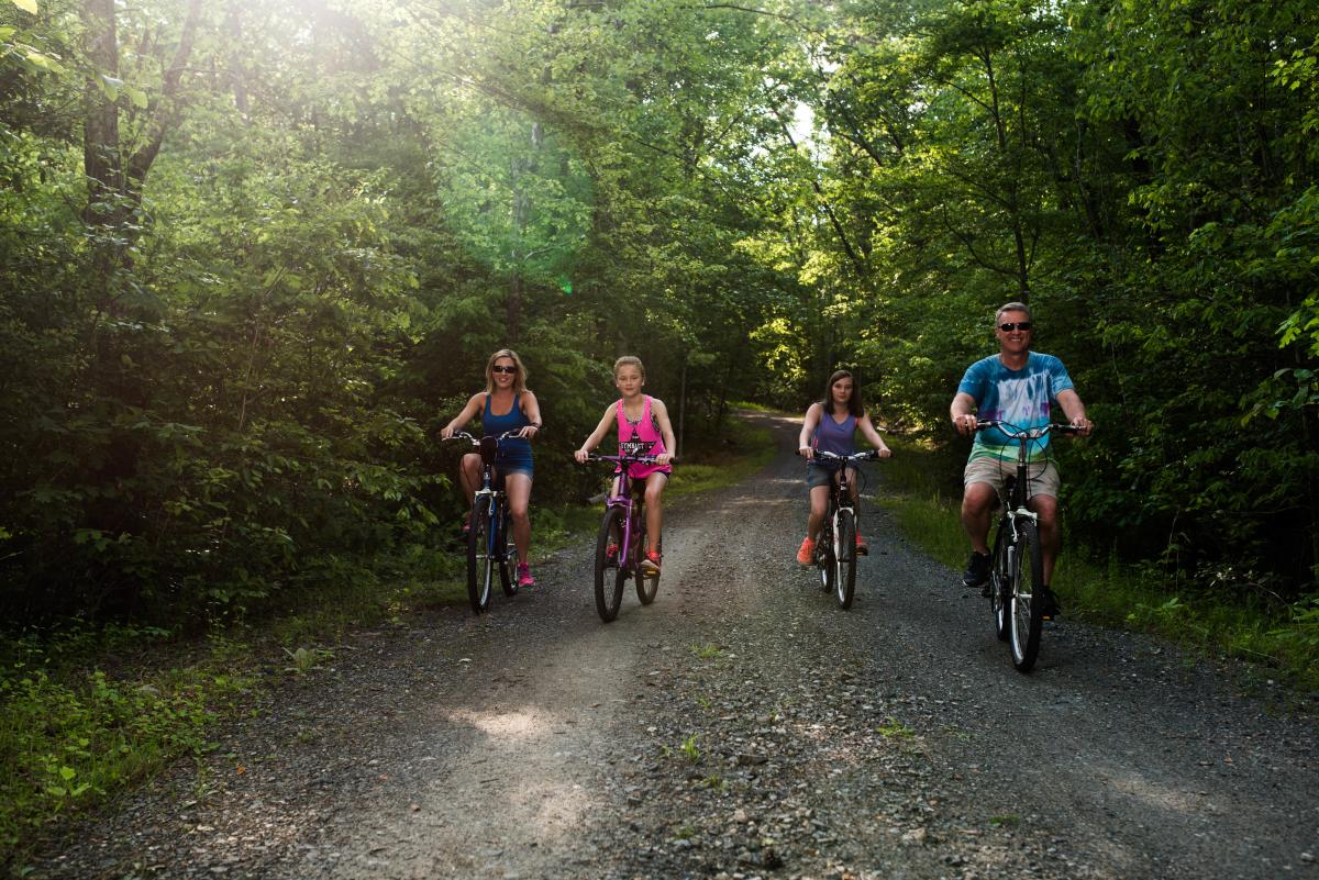 A family riding their bikes on a path in the forest