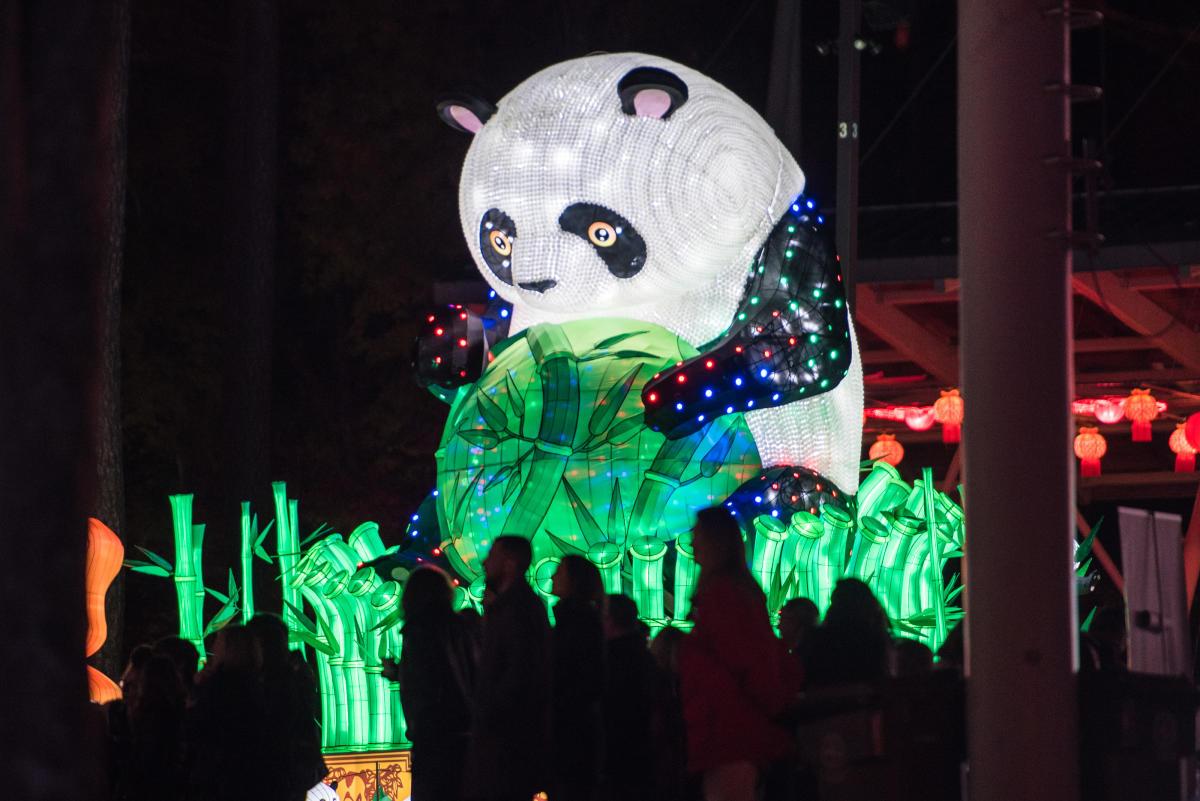 Chinese Lantern Festival large panda