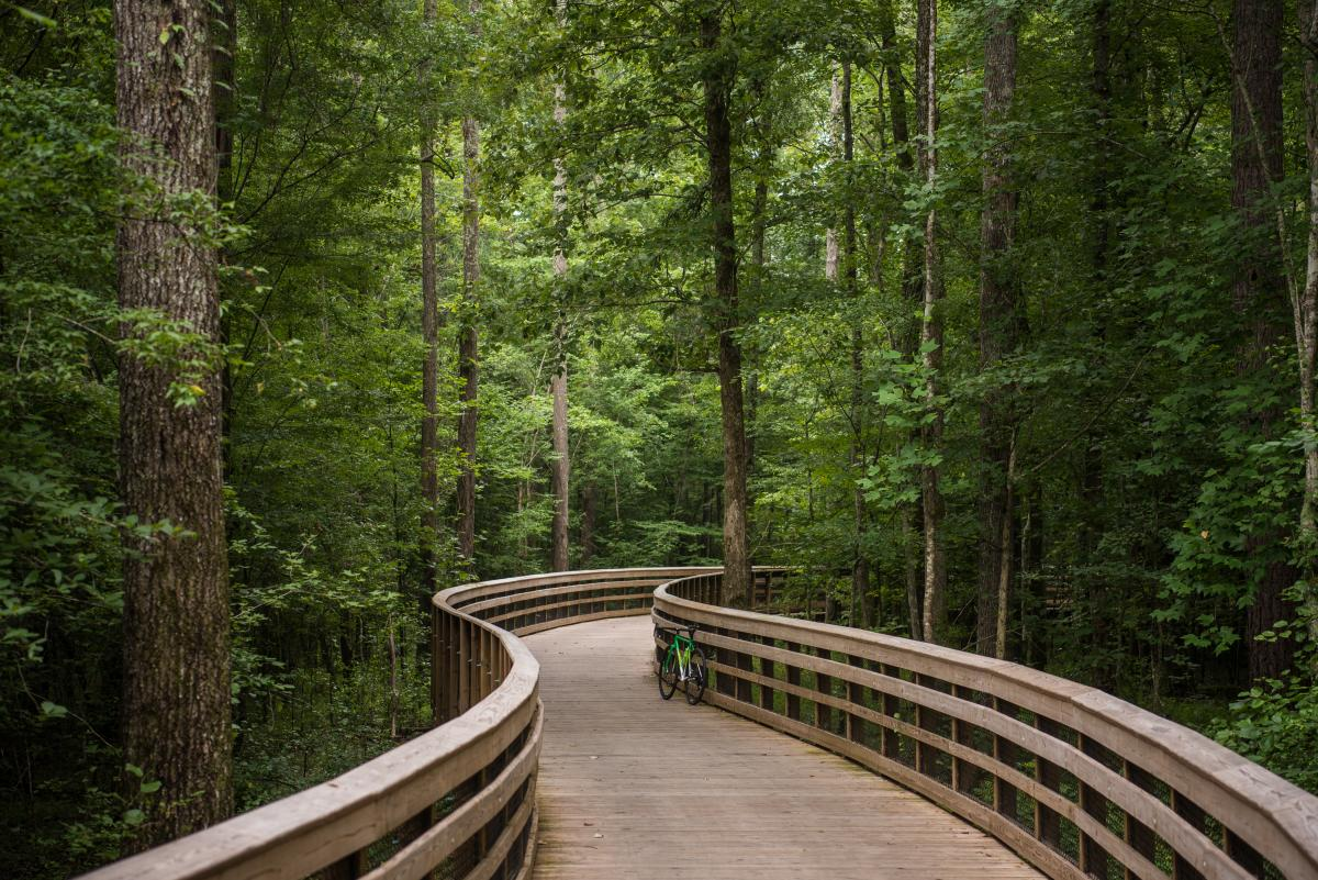 White Oak Creek Greenway