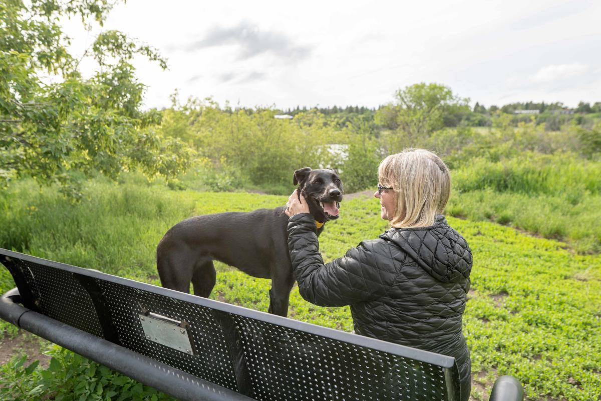 Sutherland dog park - Ashlyn George