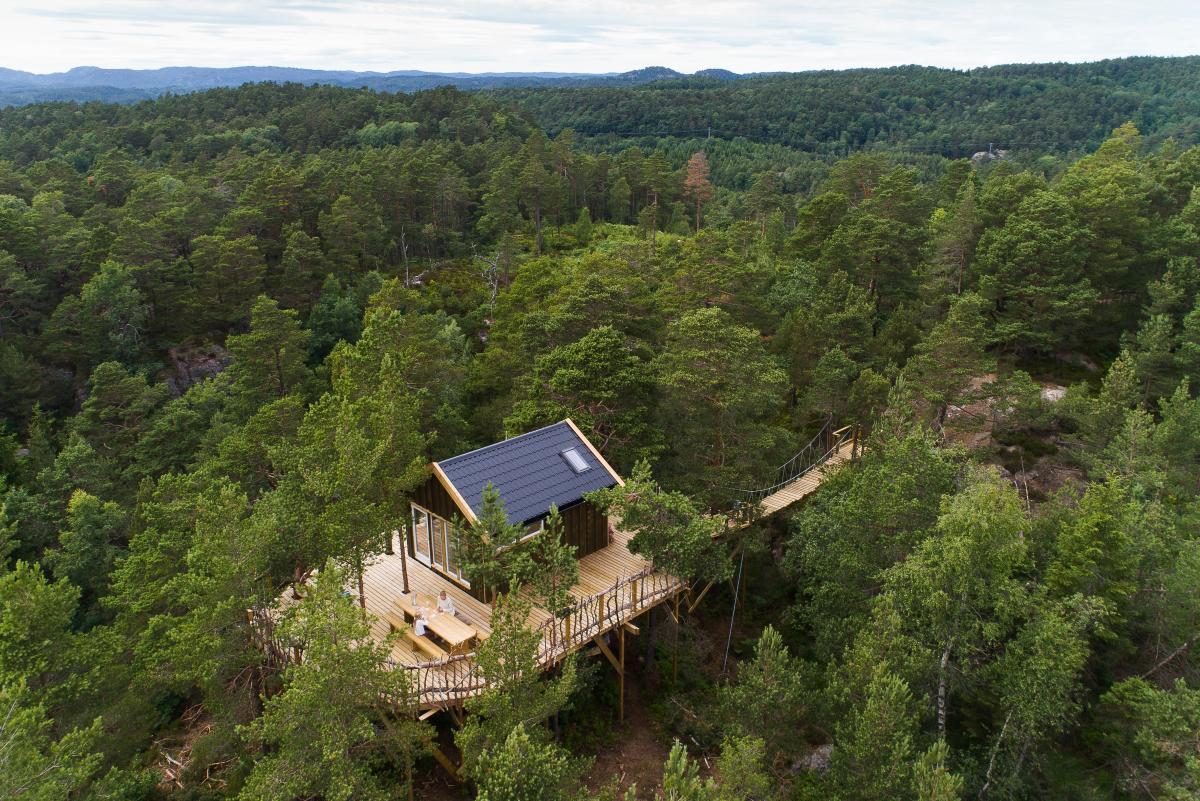 Gluba Treetop Cabins
