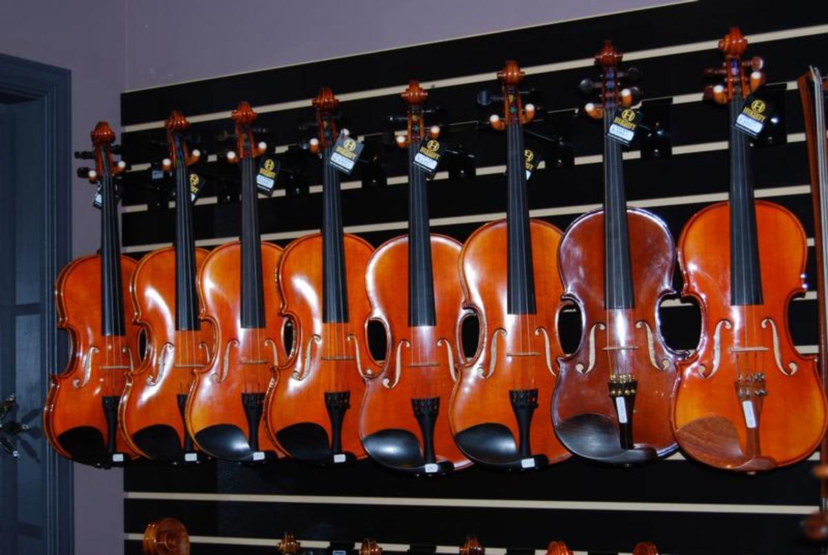 Hershey Violins-4
