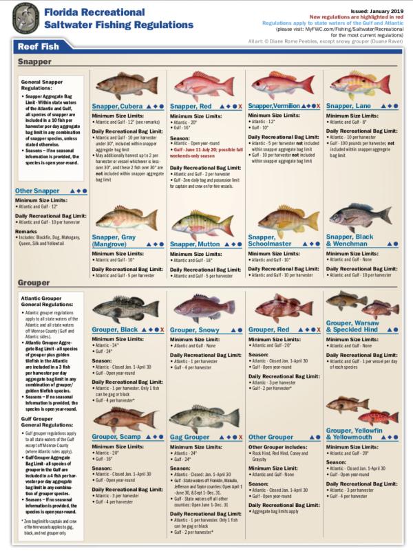Fishing Chart 2019
