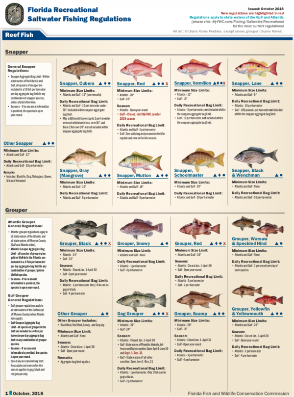 2019 Fishing Resources
