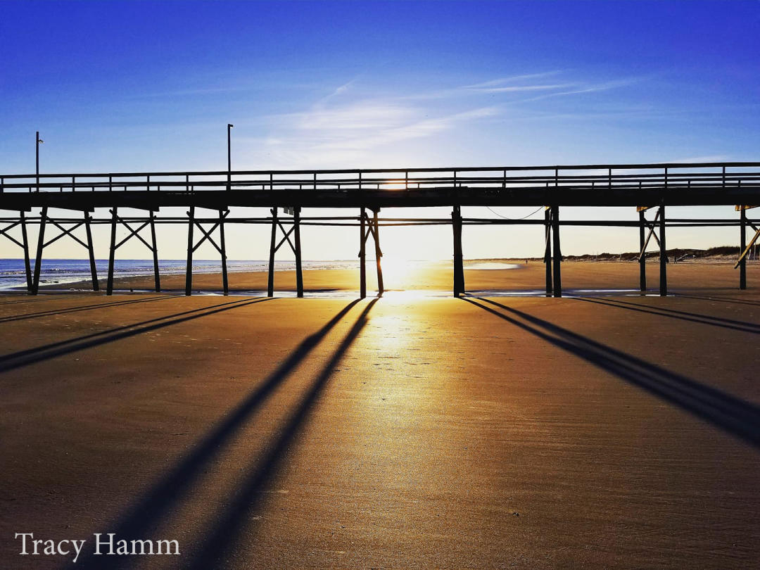 Tracy Hamm_2020 Photo Contest Second Place Winner