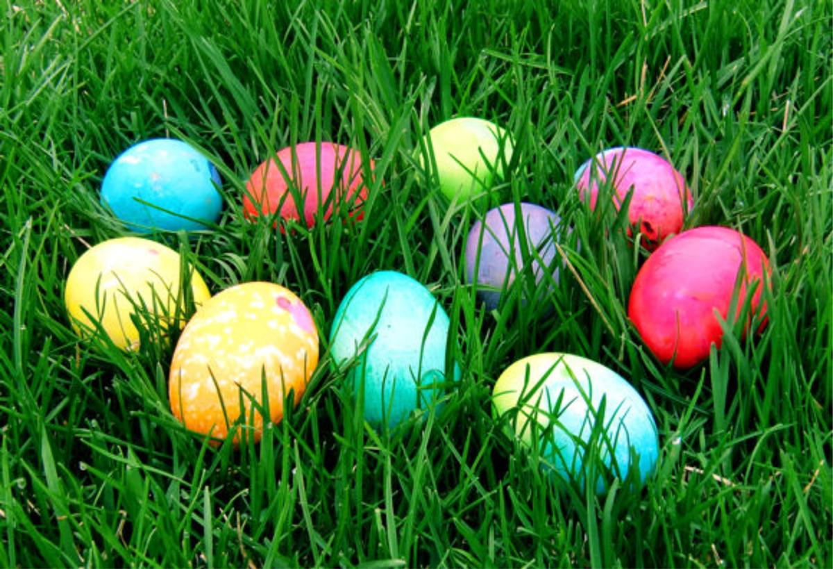 Celebrate Easter in the Stevens Point Area with a multitude of Easter Egg Hunts, brunches, and more to choose from- your whole family will be sure to find something they love!