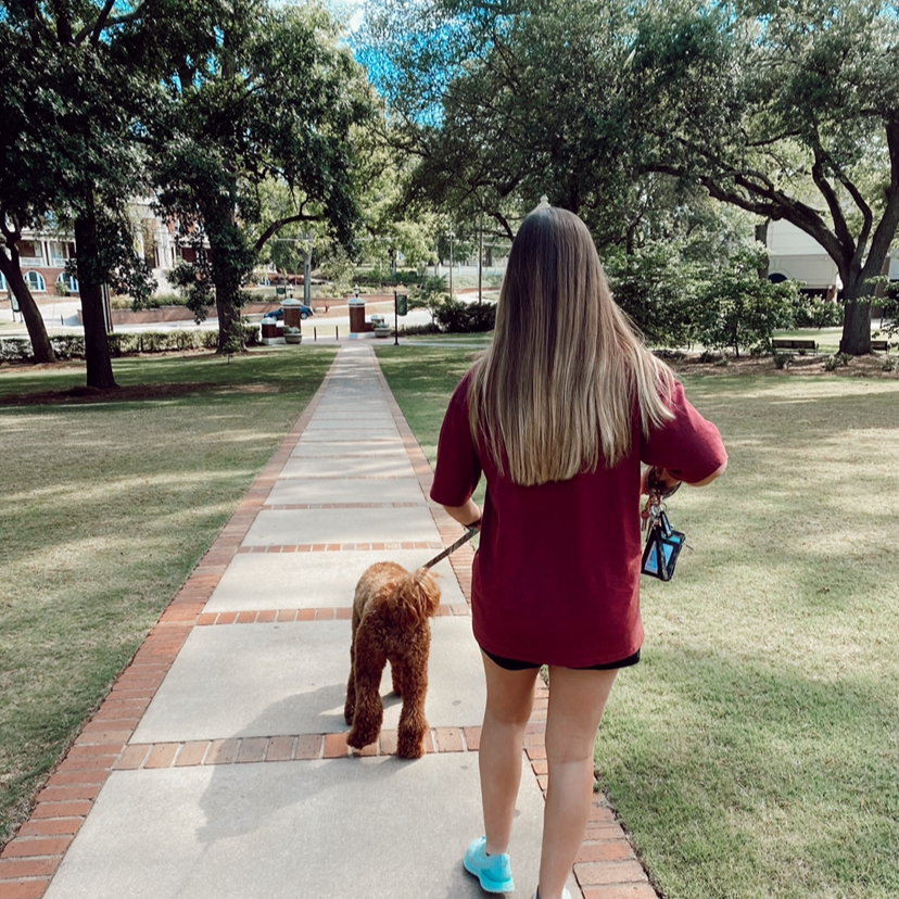 Woman walking a dog through the park.