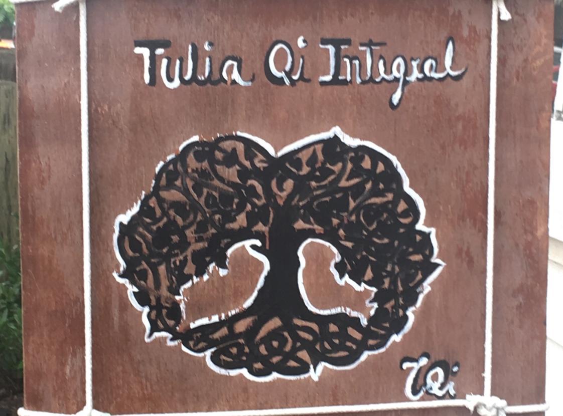 TULIA QI INTEGRAL