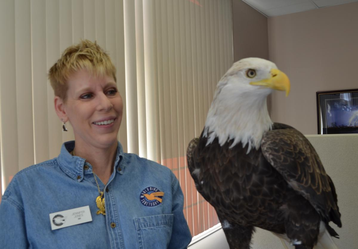 Eagle Meet & Greet at Alton Visitor Center