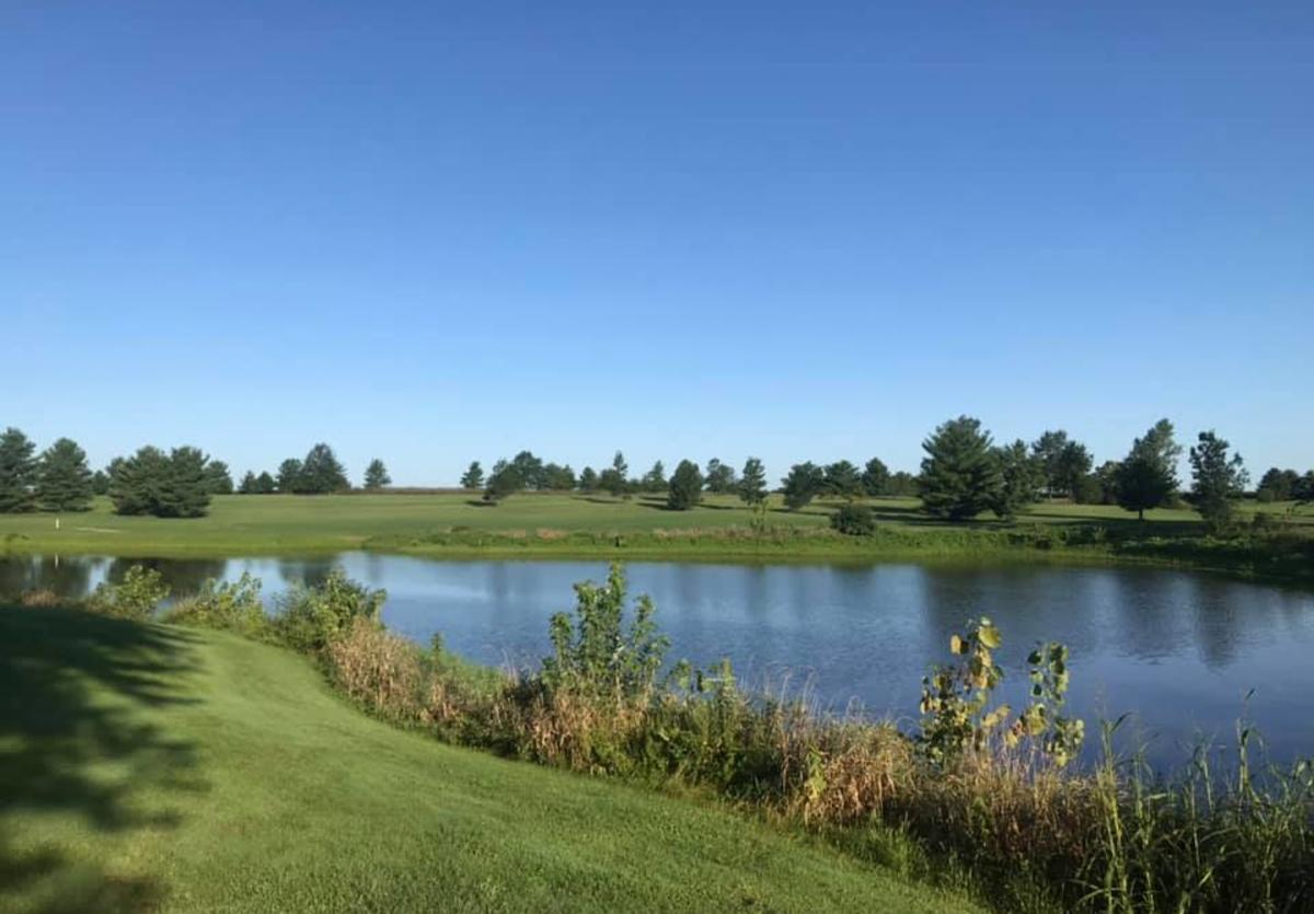 Wolves crossing golf