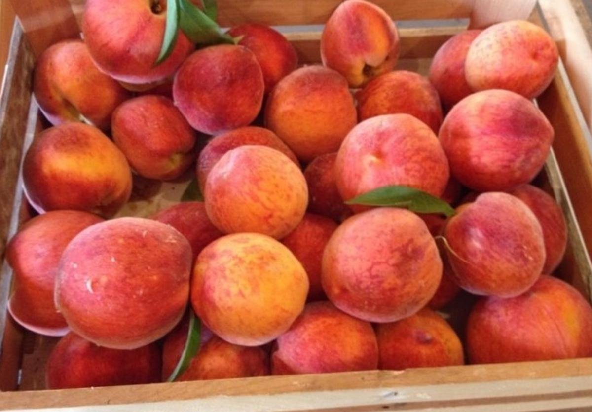 Peaches from Backwoods Berry Farm