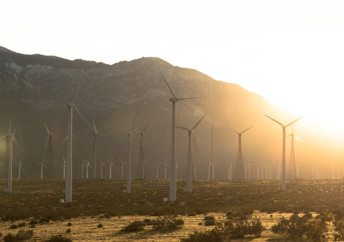 Windmills in Palm Springs at golden hour