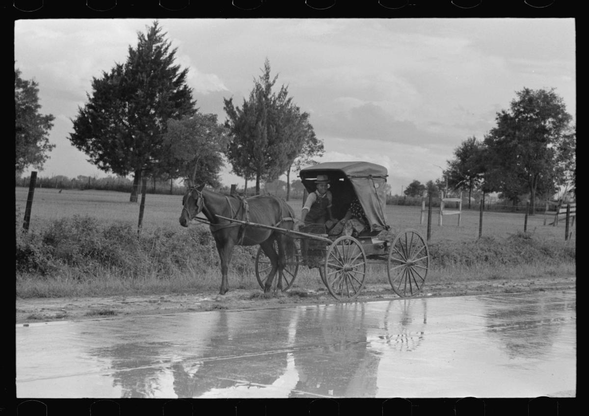 [Untitled-photo,-possibly-related-to_-Buggy-stopped-on-highway-near-Lafayette,-Louisiana]