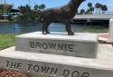A statue of a stray dog named Brownie that captured the hearts of the residents of Daytona Beach years ago.