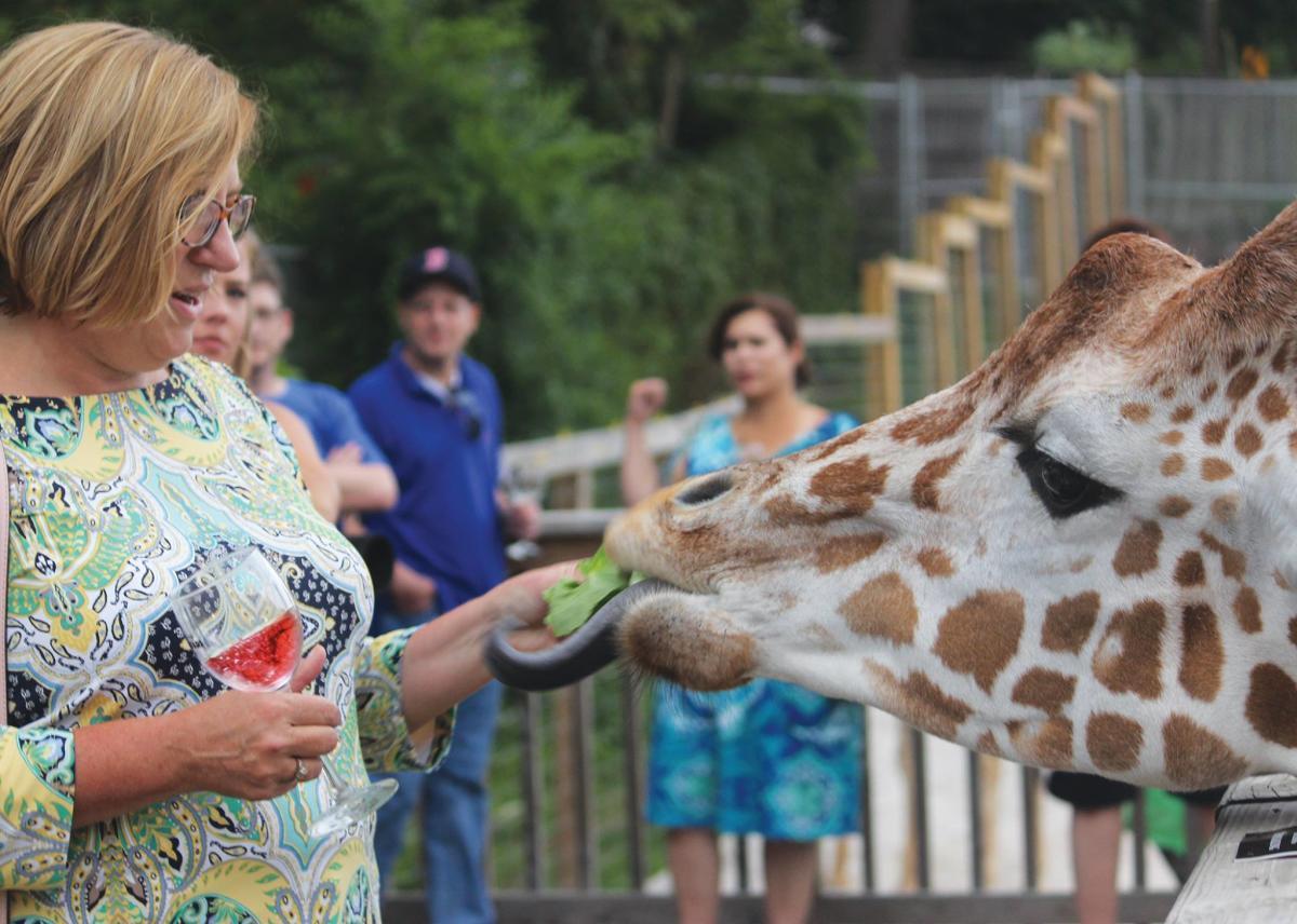 The Wine Safari at Elmwood Park Zoo includes a giraffe feeding experience.