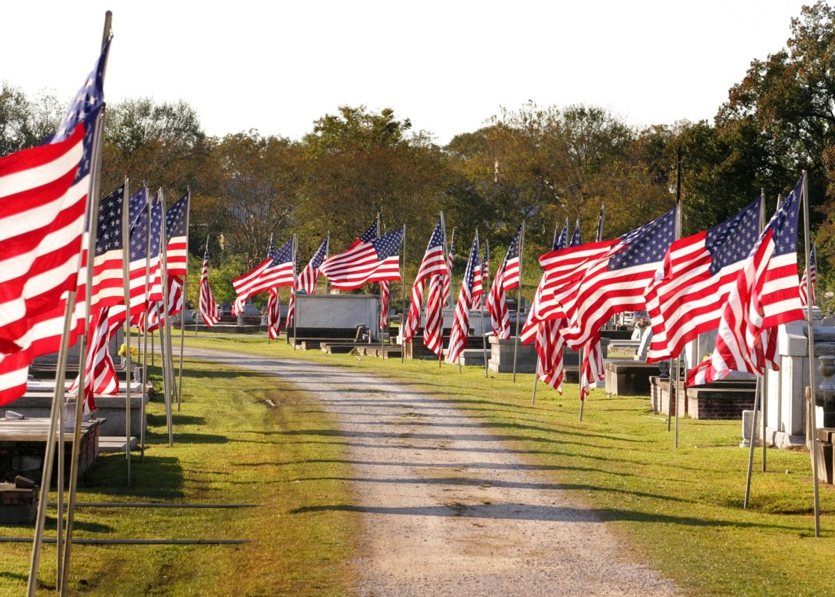 Memorial Flags Lined Along Drive at Avenue of Flags