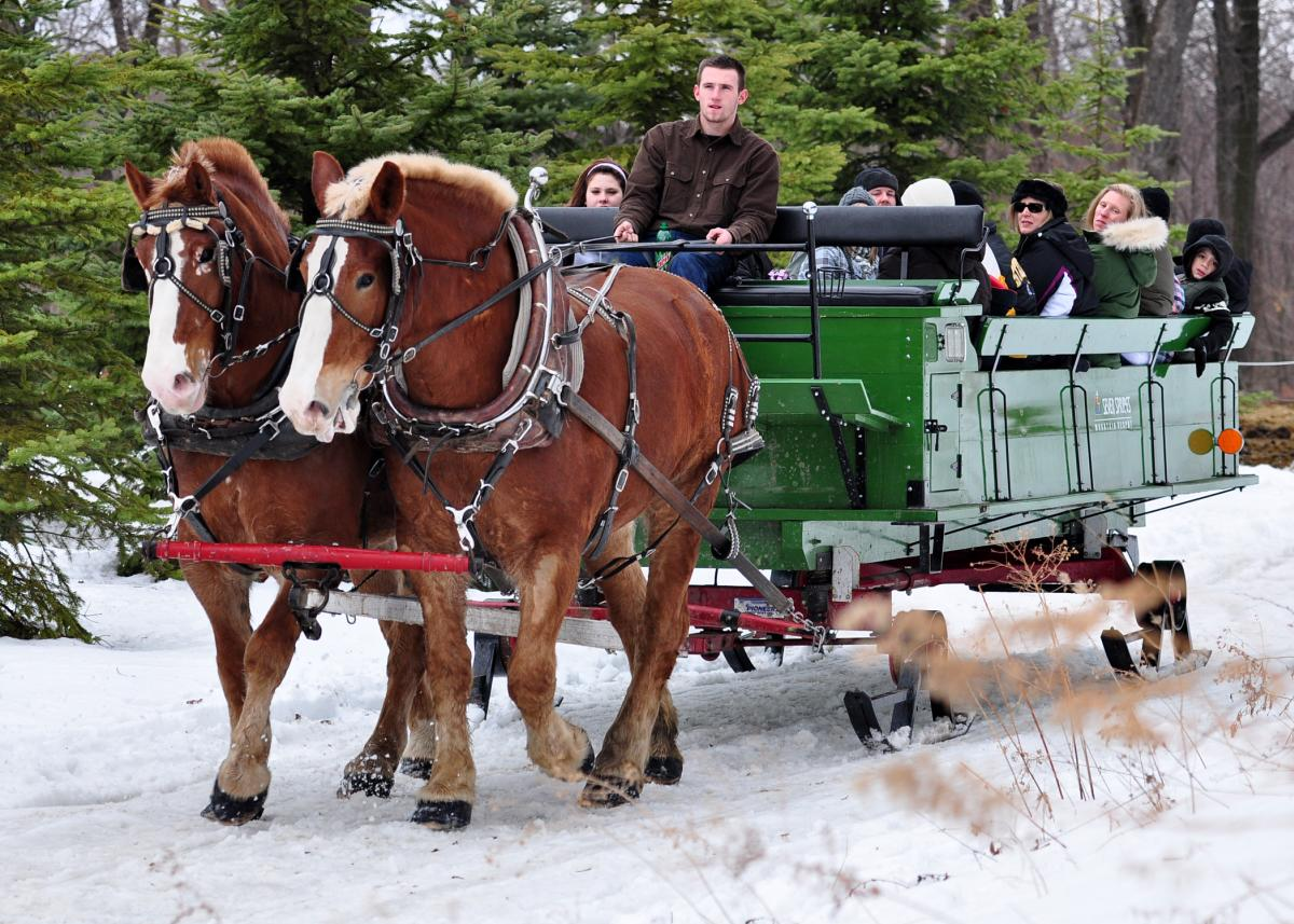 Laurel Highlands Sleigh Ride