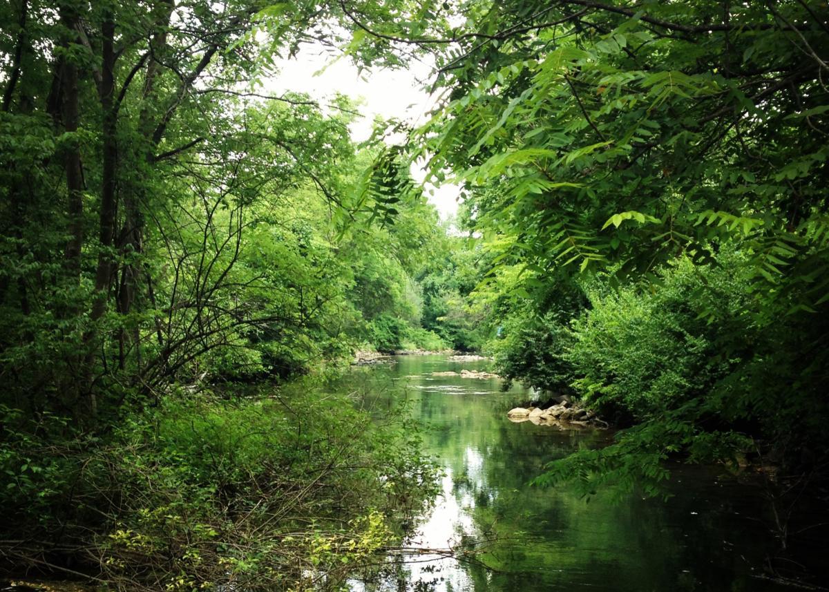 LeTort Spring Run Nature Trail