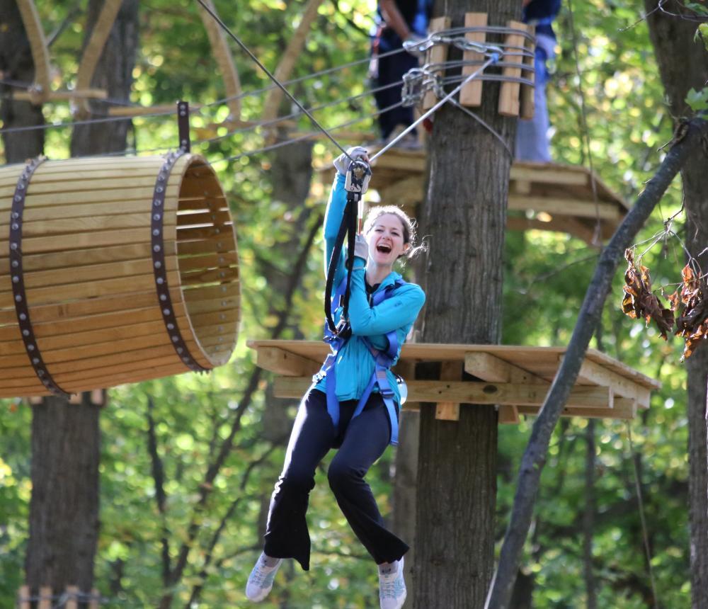 Fun in the Trees 2