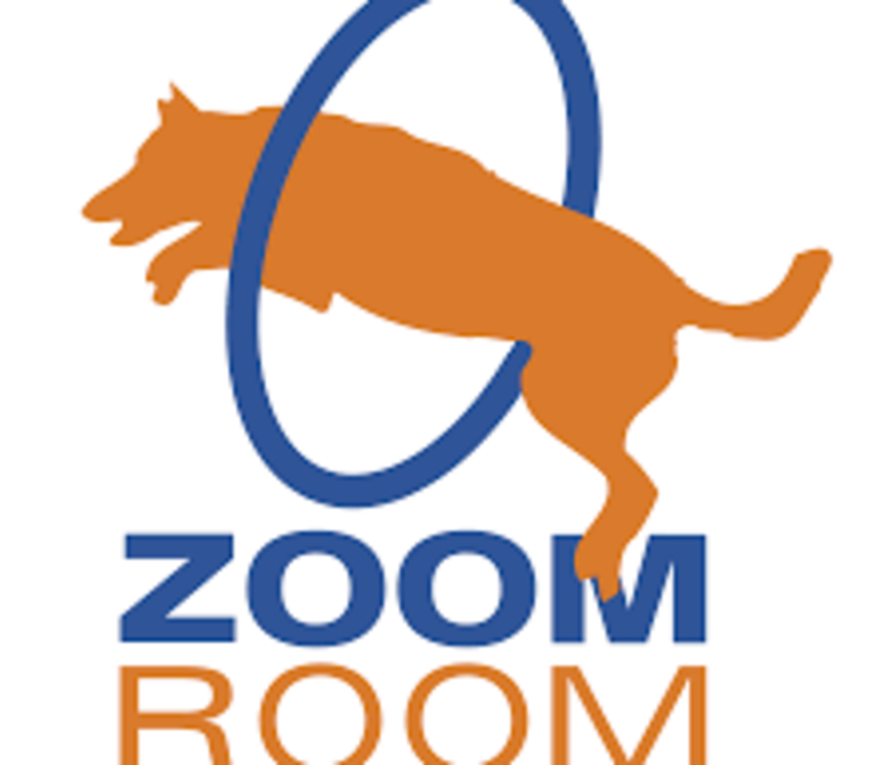 zoomroom.png