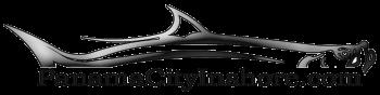 Panama City Inshore logo