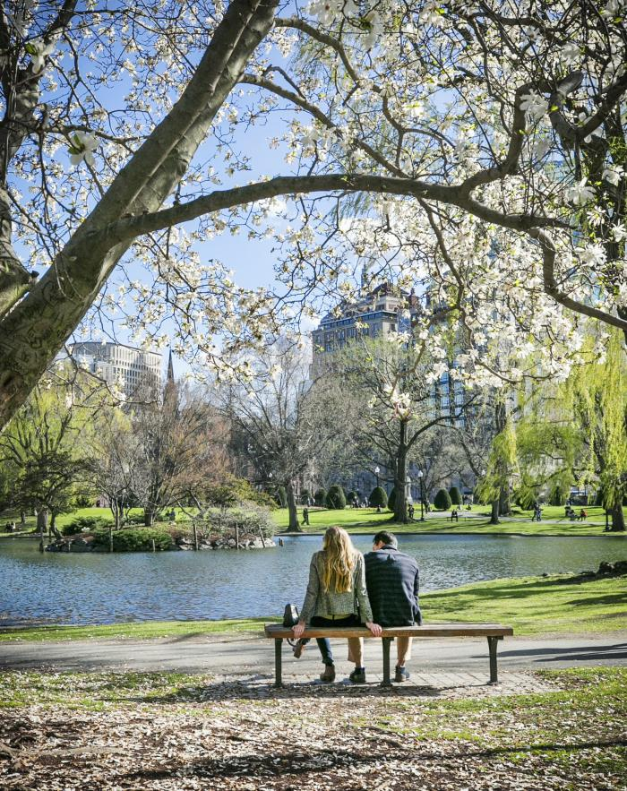 Public Garden couple in Spring