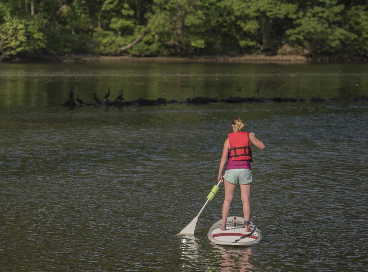 a woman in a red life jacket paddle-boarding on a body of water with birds on rocks and trees in the background