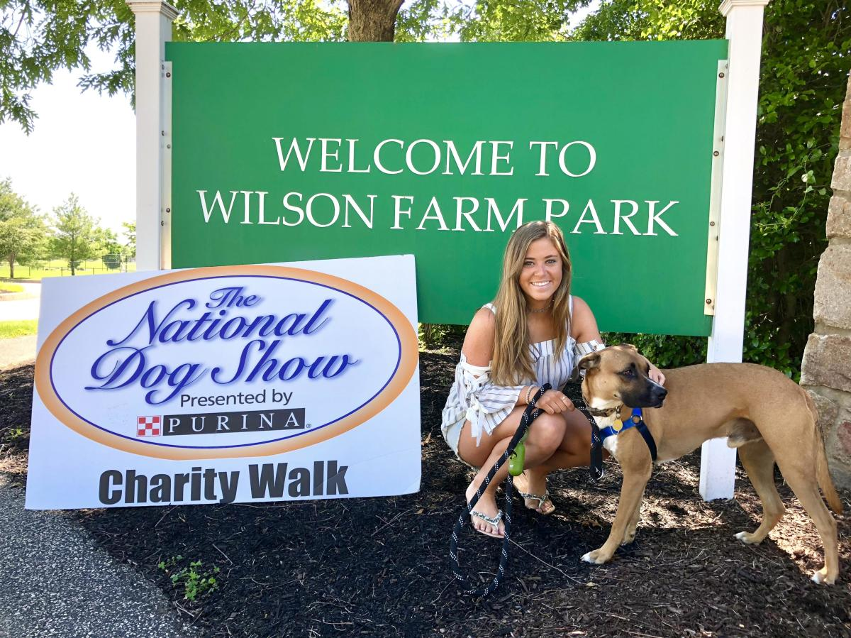National Dog Show Charity Walk