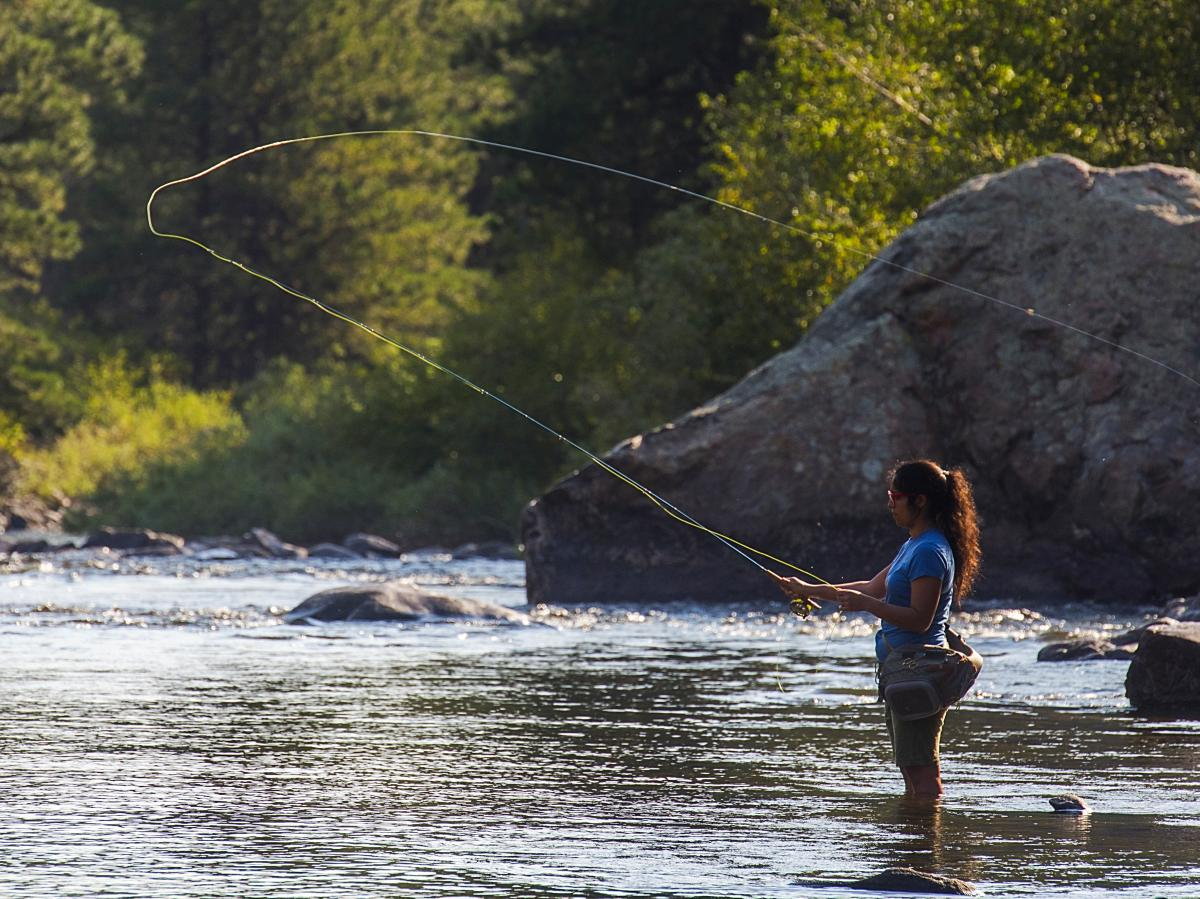 Woman Fly Fishing Poudre River