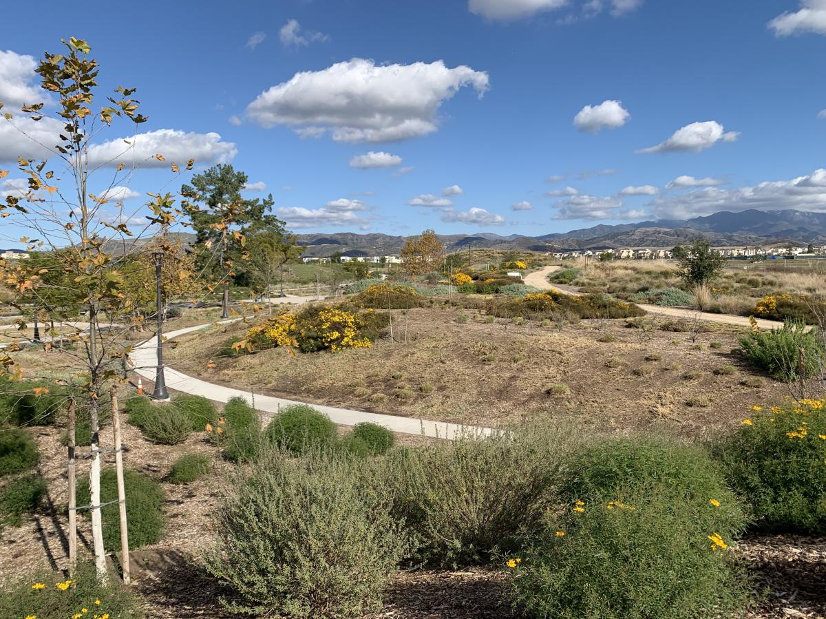A walking gravel path with yellow flowers and mountain views on Bosque Trail Great Park
