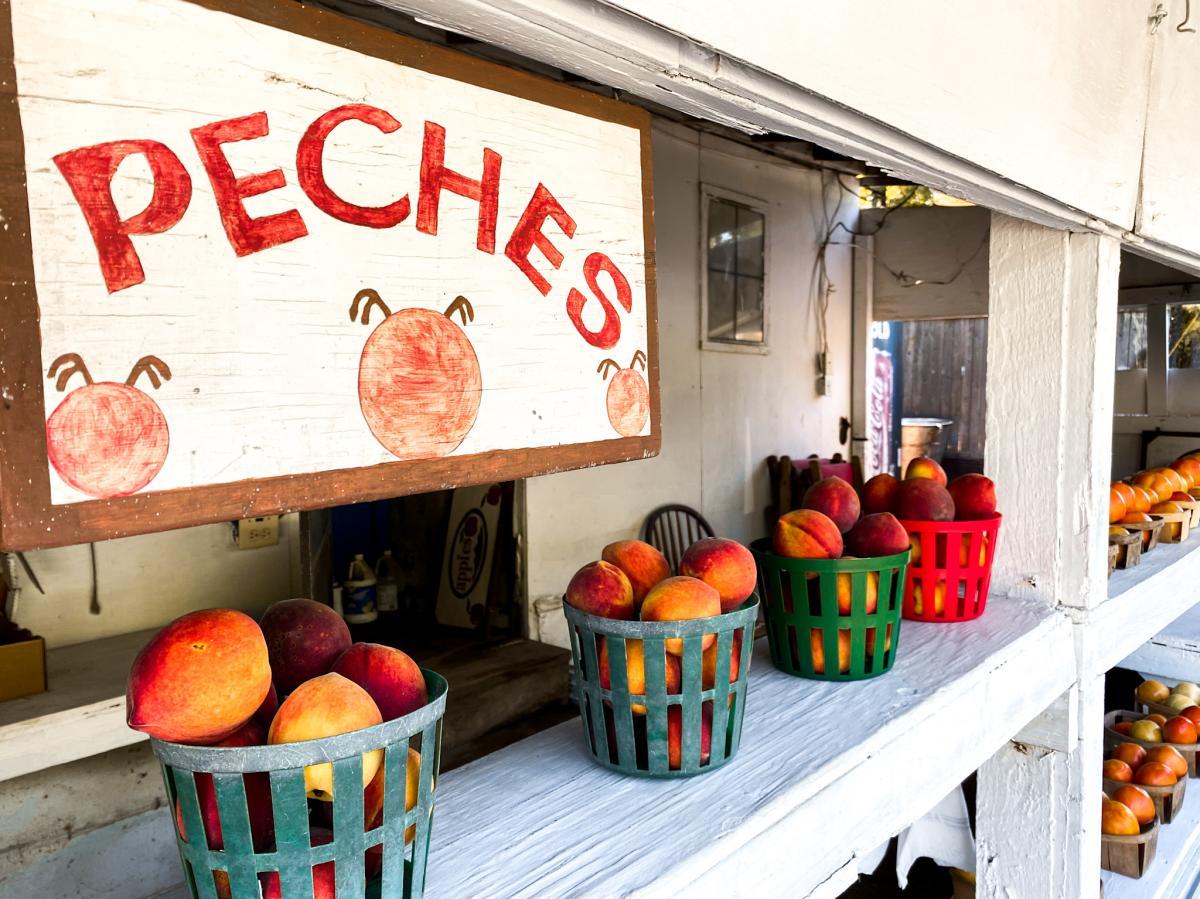 Peches Scenic Route 441