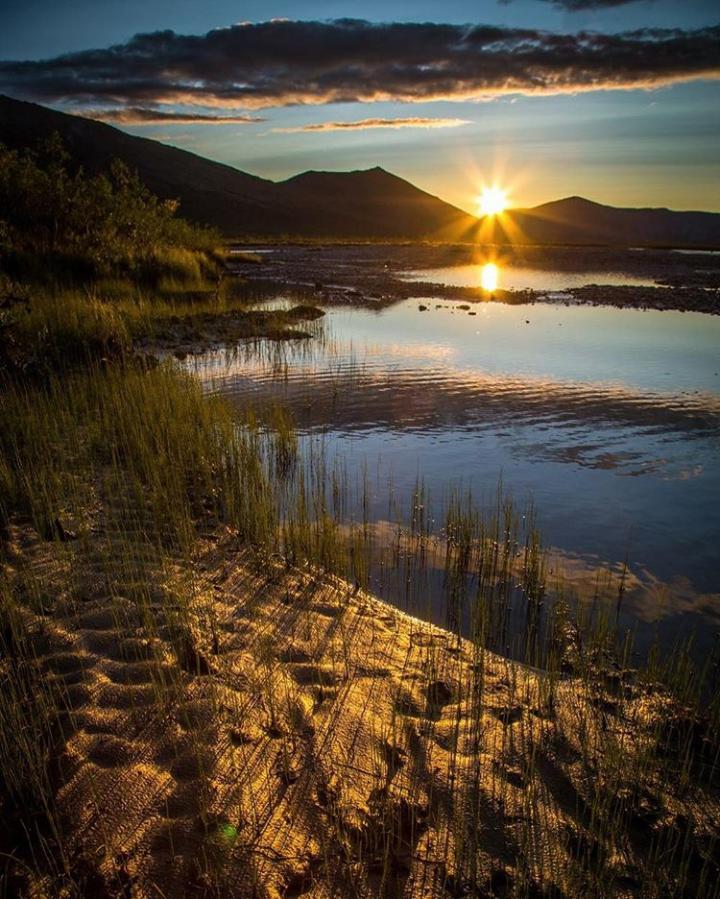 Sunset - David W. Shaw